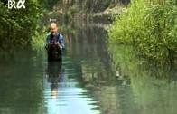 4-Elementenlehre Teil 3 – Das Wasser