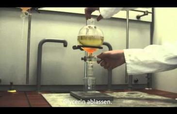 Anleitung zur Herstellung von Biodiesel
