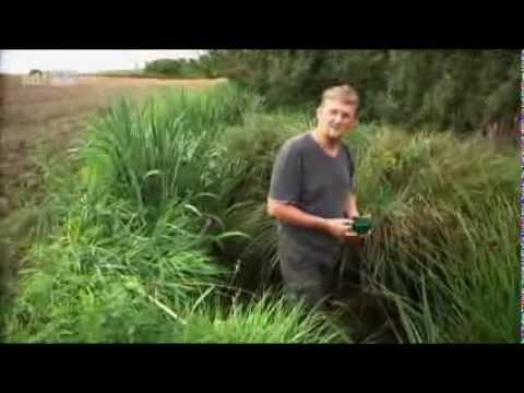 Das tägliche Gift – Risiko Pestizide
