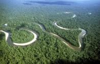 Der Amazonas – Doku