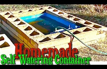Homemade Self Watering Container Gardening Construction using a Rain Barrel