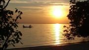 Paradiesche Amazonaswelt – Doku