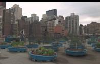 Urban Farming – Gemüse aus der Stadt – Trailer