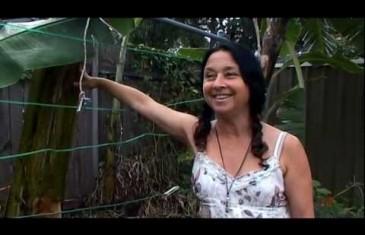 Urban Garden with Michele Margolis