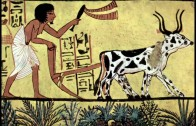 Was tun gegen Schnecken – Sepp Holzer bei Michel von Tell – Natürliche Landwirtschaft