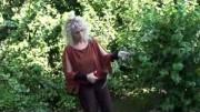 Kräuterlehrgang: Das Wildkraut Beifuß – Artemisia vulgaris